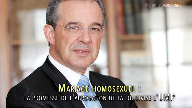 Mariage homosexuel : la promesse de l'abrogation de la loi divise l'UMP