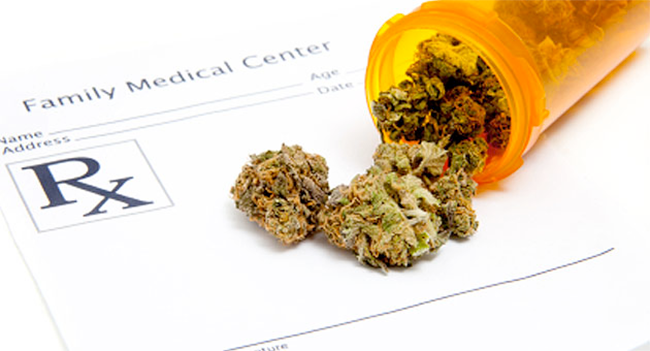 Fabienne Lopez : «La logique voudrait que pourexploiter ses vertus, on ne fume pas le cannabis»