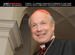 Synode---Le-cardinal-autrichien-Schönborn-dit-son-estime-pour-un-couple-homosexuel-catholique-de-sa-connaissance---stop---homophobie
