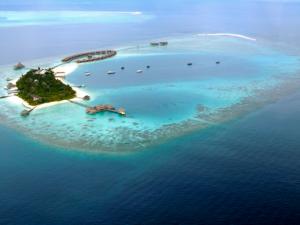 Maldives---Deux-hommes-accusés-d'homosexualité-risquent-la-peine-de-mort