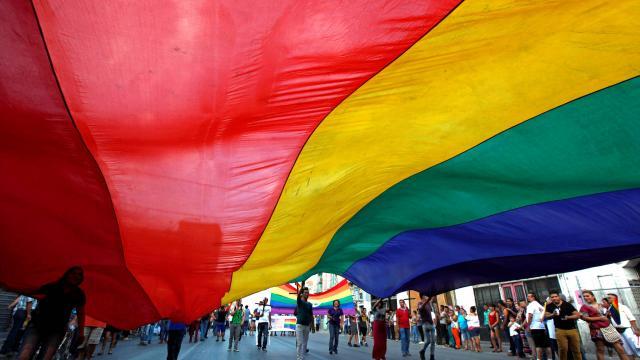Marche des fiertés LGBT : les socialistes réaffirment « leur mobilisation pour l'égalité »