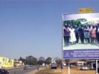 Décriminalisation de l'homosexualité : Le Malawi annonce l'ouverture de « consultations publiques »
