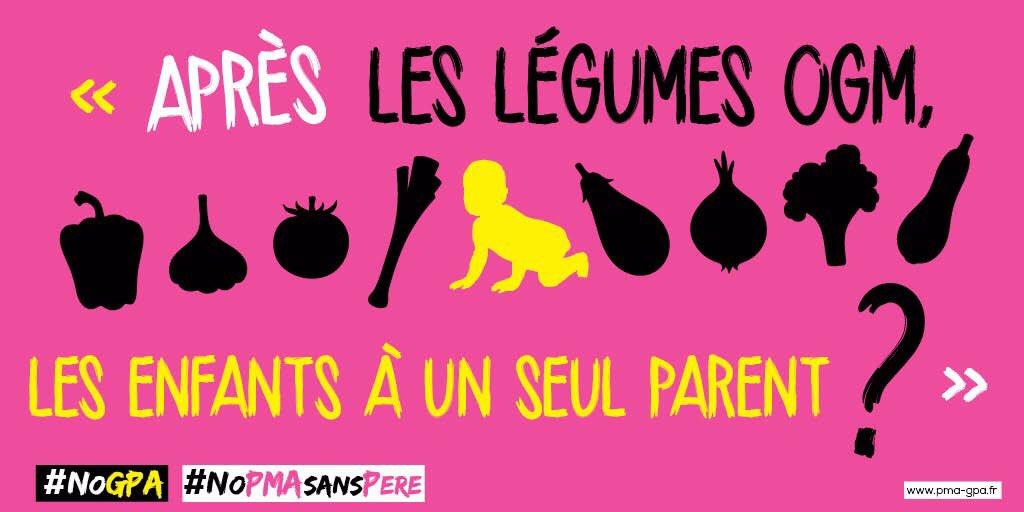 « La palme de l'abjection » : Les enfants nés d'une PMA comparés à des légumes OGM par les opposants