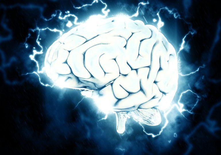 Une étude conforte la corrélation entre « homophobie et faible niveau d'intelligence cognitive »