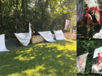 L'exposition « Les couples de la République » d'Olivier Ciappa à nouveau victime de vandalisme à Metz