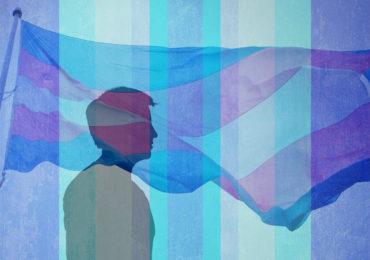 La CEDH condamne la Macédoine pour non-respect du droit à la vie privée d'une personne transgenre